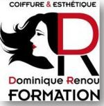 Dominique-Renou Formation Angers