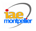 Licence Management des sciences et technologies IAE Montpellier
