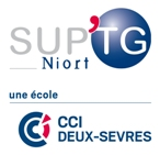 E-commerce manager SUP'TG Niort