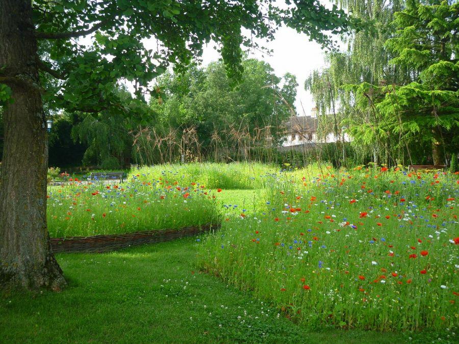 Ecole d 39 horticulture et du paysage roville aux chenes for Horticulture et paysage