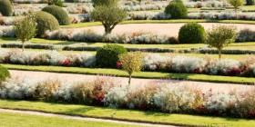 Jardins et fleurs : guide des �coles et formations