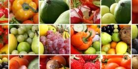 Nutrition et di�t�tique : guide des �coles et formations