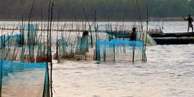 P�che et aquaculture : guide des �coles et formations