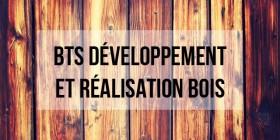 BTS D�veloppement et r�alisation bois : programme, d�bouch�s et poursuite d'�tude